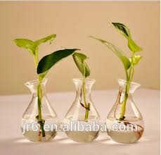 Clear Plastic Tall Vases Fashion Mini Clear Plastic Glass Acrylic Flower Decoratives Vase