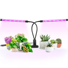 best light for plants best light for plants amazon com