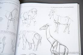 book review the weatherly guide to drawing animals parka blogs