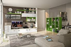 Contemporary Living Room Cabinets Living Room Awe Inspiring Wall Storage Unit Ideas For Living