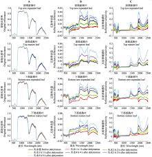 Canap茅 2m 水分敏感的反射光谱指数比较研究 以锐齿槲栎为例