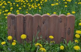 Cement Garden Decor Interesting 40 Concrete Molds Garden Decor Design Inspiration Of