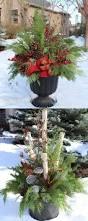 Christmas Decorating Ideas Outdoor Planters Pictures Best 25 Outdoor Planters Ideas On Pinterest Potted Plants