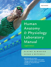Human Anatomy And Physiology Courses Online Marieb U0026 Mitchell Human Anatomy U0026 Physiology Laboratory Manual