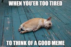 Too Tired Meme - tired dog imgflip