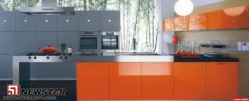 High Kitchen Cabinet Extraordinary 25 High Gloss Paint For Kitchen Cabinets