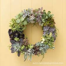 succulent wreath how to make a living succulent wreath succulents and