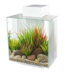 amazon com fluval edge 12 gallon aquarium with 42 led light