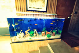 baby nursery heavenly floor fish tank highest clarity gallery