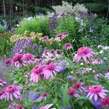 garden pictures garden design