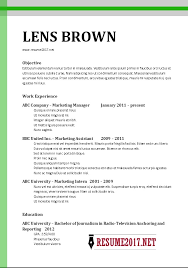 free chronological resume template examples of chronological
