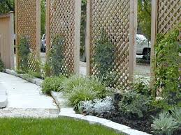 Inexpensive Backyard Privacy Ideas Small Backyard Privacy Ideas Best Patio Privacy Ideas On Patio