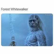 White Walker Meme - dopl3r com memes forest whitewalker cosmoskyle