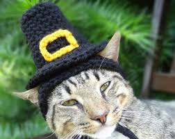 thanksgiving cat etsy