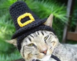 thanksgiving cat etsy
