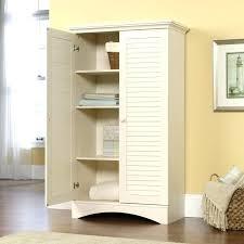 sauder homeplus basic storage cabinet dakota oak sauder homeplus storage cabinet dakota oak sauder homeplus storage