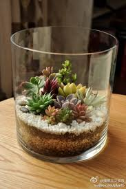 14 amazing diy teapot planters terraria glass and plants