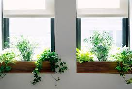 indoor window garden the sill terrain planting a window box the blog at terrain