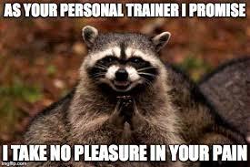 Personal Trainer Meme - evil plotting raccoon meme imgflip