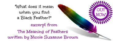 what does it when you find a black feather spiritual wisdom