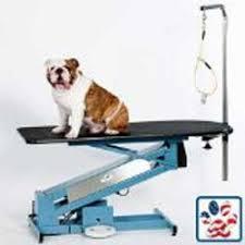 diy dog grooming table professional dog grooming tips at home diy dog grooming