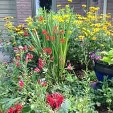 flowers denver home flowers landscaping northwest denver co phone