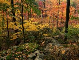New Jersey mountains images Photographs of the new jersey highlands jpg