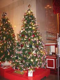 Pictures Of Christmas Window Decorations by Best 25 Pictures Of Christmas Trees Ideas On Pinterest Xmas