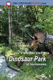 Tennesse by Best 25 Tennessee Ideas On Pinterest Tennessee Vacation Visit