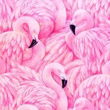 Flamingo Rugs Flamingo Facade Printing Process Free Paper And Fine Art Prints
