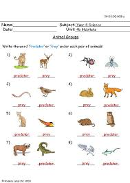 primaryleap co uk animal groups 4 worksheet