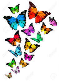 background with colorful butterflies vector royalty free