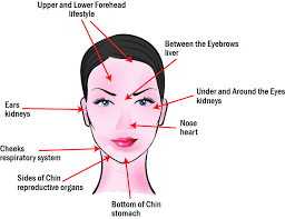 What Causes Blind Pimples In Adults What Does Acne Reveal About Your Health Acne Face Map Hard