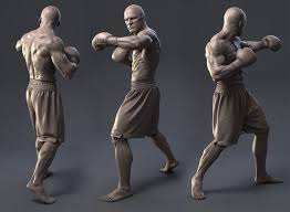 Male Anatomy Video 137 Best Male Anatomy Images On Pinterest Anatomy Anatomy