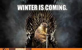 Winter Is Coming Meme - gifs and memes imbolc is coming meme groundhog game of thrones