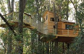 building your own tree house how to build a house treehouse construction is on the rise tree services
