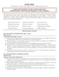 Coo Resume Examples by Global Procurement Executive Resume