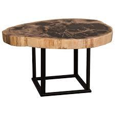 petrified wood tables brw table 73x43 side table diy wood slab