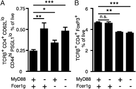 b cell u2013extrinsic myd88 and fcer1g negatively regulate autoreactive