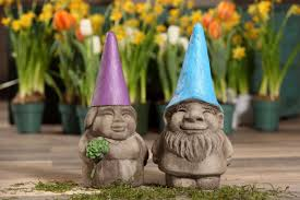 gnora the gnome isabel bloom