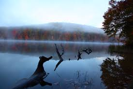 West Virginia lakes images File autumn mountain lake tree reflections west virginia jpg