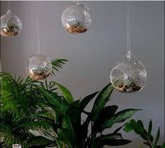 aliexpress com buy 4pcs set hanging glass globe vase air plant
