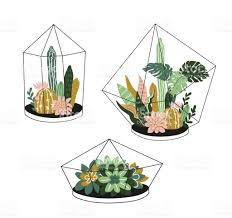hand drawn contained tropical house plants scandinavian style