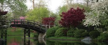 The Missouri Botanical Garden Celebrate Awakenings During This Weekend S Missouri