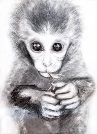 monkey drawing u201egoogle u201c paieška monk pinterest monkey drawing
