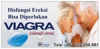 jual obat kuat viagra usa original harga murah jual obat kuat