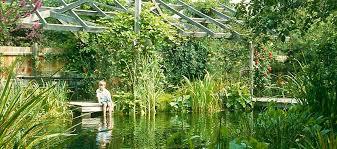 Natural Swimming Pool Woodhouse Natural Swimming Pools Ponds U0026 Conversions