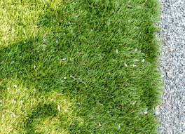 Family Garden Brooklyn Case Study 7 Gardens With Artificial Grass Gardenista