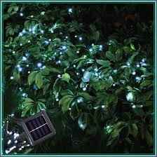 christmas tree solar lights outdoors christmas tree solar lights outdoors solar knowledge base