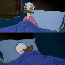 Meme Bed - donald duck bed blank template imgflip